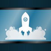 Wordpress must have plugins